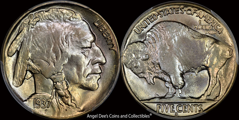 Buffalo Nickels | Angel Dee's Coins and Collectibles